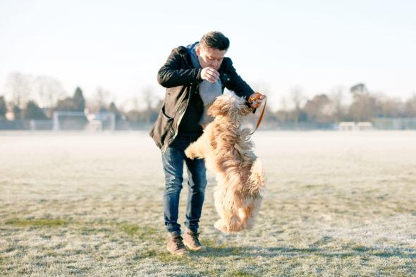 2017_01_21_Harrys-Dog-Training_Capture_049.jpg - Harry's Dog Training - Jack Terry