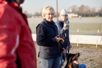 2017_01_21_Harrys-Dog-Training_Capture_11-1.jpg - Harry's Dog Training - Jack Terry